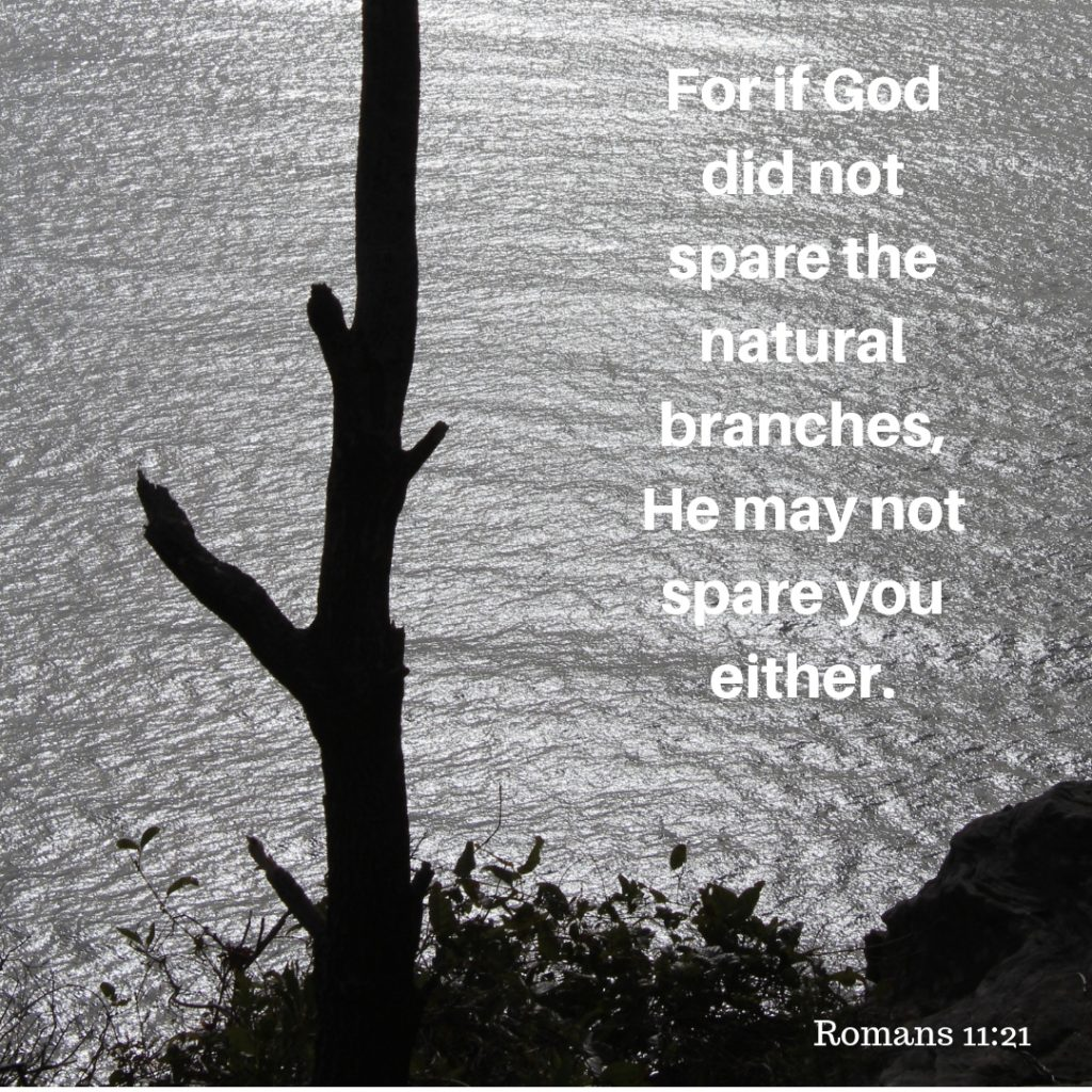 For if God did not spare the natural branches, He may not spare you either.